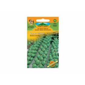 http://www.semena-rostliny.cz/13679-thickbox/kapusta-rl-ll-groninger.jpg