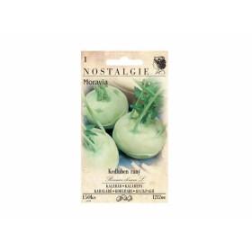 http://www.semena-rostliny.cz/13696-thickbox/kedluben-r-b-l-moravia.jpg
