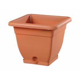 http://www.semena-rostliny.cz/13869-thickbox/kva-t-bell-30x30x26h-h.jpg