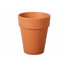 http://www.semena-rostliny.cz/13981-thickbox/kva-t-iris-d38x46h-xl-sp.jpg