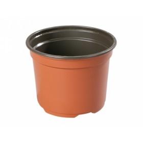 http://www.semena-rostliny.cz/14059-thickbox/kva-t-premium-vcd-d10cm-leh-15k.jpg
