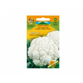http://www.semena-rostliny.cz/14138-thickbox/kva-t-k-r-bora.jpg