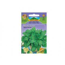 http://www.semena-rostliny.cz/14289-thickbox/medul.jpg