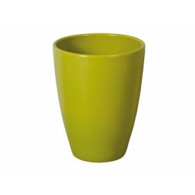 http://www.semena-rostliny.cz/14741-thickbox/obal-falenopsia-tradico-d13cm-zelen-lesk.jpg