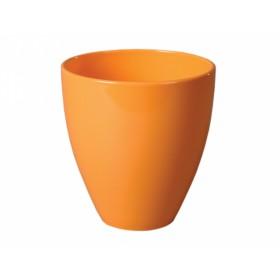 http://www.semena-rostliny.cz/14792-thickbox/obal-isabelia-pikaso-d15cm-sp-or-lesk.jpg