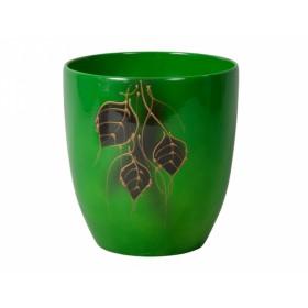 http://www.semena-rostliny.cz/14857-thickbox/obal-kodet-leaves-3-d13cm-zelen-lesk.jpg