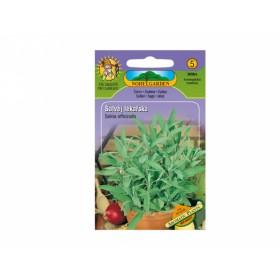 http://www.semena-rostliny.cz/16644-thickbox/l-alva-j-l-k-l.jpg