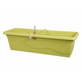 http://www.semena-rostliny.cz/16833-thickbox/truh-sam-extra-line-smart-60cm-zelen.jpg