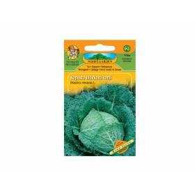 http://www.semena-rostliny.cz/17213-thickbox/kapusta-hl-r-ran.jpg