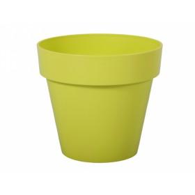 http://www.semena-rostliny.cz/17420-thickbox/kva-t-mitu-d16x14h-lesk-sv-zelen.jpg