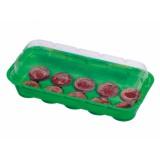 Minipařeniště š.26x11x7cm +10rašelinové tablety ELEANOR