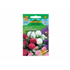 http://www.semena-rostliny.cz/17820-thickbox/cal-ch-astra-chryz-n-sm.jpg