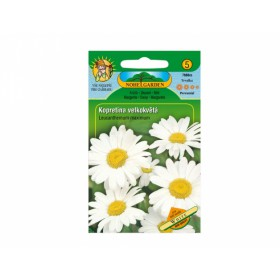 http://www.semena-rostliny.cz/17856-thickbox/leucanthemum-m-kopretina.jpg