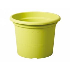 http://www.semena-rostliny.cz/18084-thickbox/kva-t-geo-d40x30h-e.jpg
