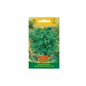 http://www.semena-rostliny.cz/18129-thickbox/bazalka-zelen-l.jpg