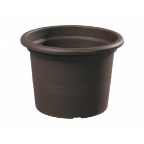 http://www.semena-rostliny.cz/18377-thickbox/kva-t-campanula-d13x9h-pk.jpg