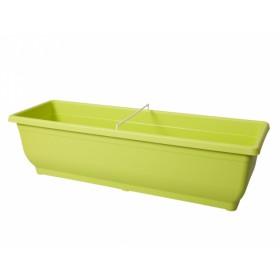 http://www.semena-rostliny.cz/18500-thickbox/truh-verbena-50cm.jpg