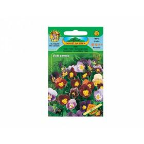 http://www.semena-rostliny.cz/18562-thickbox/viola-cor-violka-sm.jpg