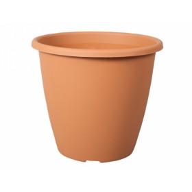 http://www.semena-rostliny.cz/18620-thickbox/kva-t-nevada-d35cm.jpg