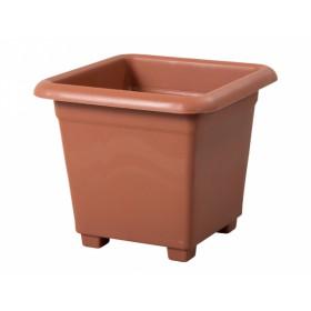 http://www.semena-rostliny.cz/18622-thickbox/kva-t-quattro-40x40h-pk.jpg