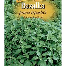 http://www.semena-rostliny.cz/21439-thickbox/bazalka-trpasliat-l.jpg
