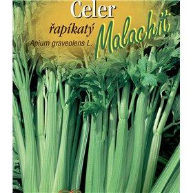 http://www.semena-rostliny.cz/21467-thickbox/celer-l-ap-malachit-ze.jpg
