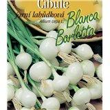 Cibule jarní bílá  lahůdková Blanca Barletta
