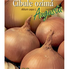 http://www.semena-rostliny.cz/21507-thickbox/cibule-oz-lll-augusta.jpg