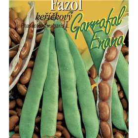 http://www.semena-rostliny.cz/21531-thickbox/fazol-kel-zel-garrafal-enana-sv-hn-s.jpg