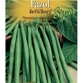 http://www.semena-rostliny.cz/21535-thickbox/fazol-kel-zel-sigma.jpg