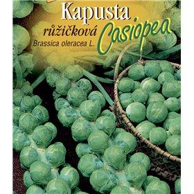 http://www.semena-rostliny.cz/21595-thickbox/kapusta-rl-ll-casiopea.jpg