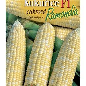http://www.semena-rostliny.cz/21635-thickbox/kukul-ice-cukr-ramondia-f1.jpg