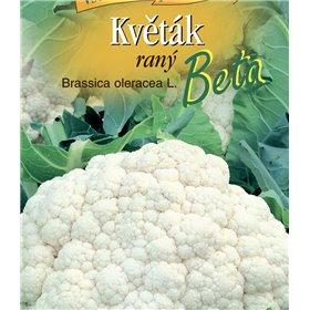 http://www.semena-rostliny.cz/21643-thickbox/kva-t-k-r-beta.jpg