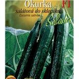 Okurka salátová do skleníku Saladin F1