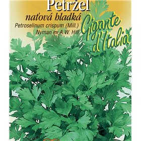 http://www.semena-rostliny.cz/21955-thickbox/petrllel-nal-hl-gigante-da-italia.jpg