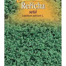 http://www.semena-rostliny.cz/22147-thickbox/l.jpg