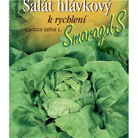 http://www.semena-rostliny.cz/22151-thickbox/sal-t-hl-r-smaragd-s-rychl.jpg