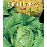 Salát hlávkový raný Amur