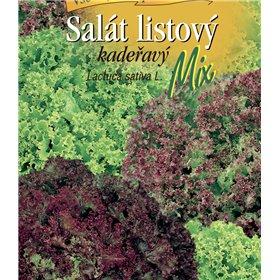 http://www.semena-rostliny.cz/22195-thickbox/sal-t-list-kad-sm.jpg
