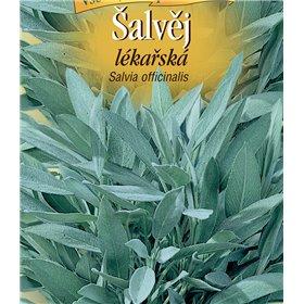 http://www.semena-rostliny.cz/22199-thickbox/l-alva-j-l-k-l.jpg