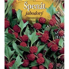 http://www.semena-rostliny.cz/22203-thickbox/l-pen-t-jahodov.jpg