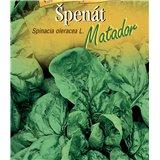 Špenát setý Matador