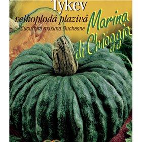 http://www.semena-rostliny.cz/22263-thickbox/tykev-plaz-marina-di-chioggia.jpg