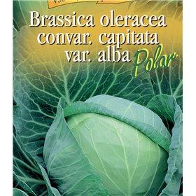 http://www.semena-rostliny.cz/22275-thickbox/zel-hl-pozd-polar-sklad.jpg