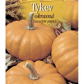 http://www.semena-rostliny.cz/22415-thickbox/cucurbita-pepo-tykev-okr-or.jpg