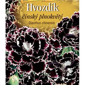 http://www.semena-rostliny.cz/22447-thickbox/dianthus-ch-hvoz-at-pl-atr-b.jpg