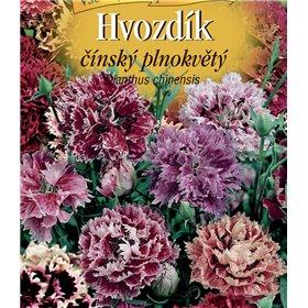 http://www.semena-rostliny.cz/22451-thickbox/dianthus-ch-hvoz-at-pl-sm.jpg