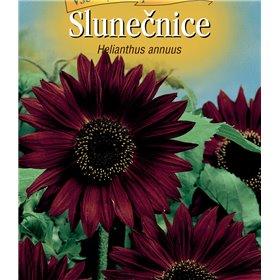 http://www.semena-rostliny.cz/22483-thickbox/helianthus-an-sluneatnice-je-ate.jpg