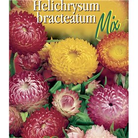http://www.semena-rostliny.cz/22491-thickbox/helichrysum-br-smil-n-sm.jpg