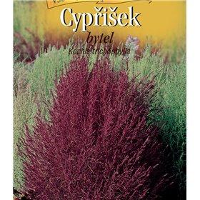 http://www.semena-rostliny.cz/22503-thickbox/kochia-trichoph-bytel-ate.jpg